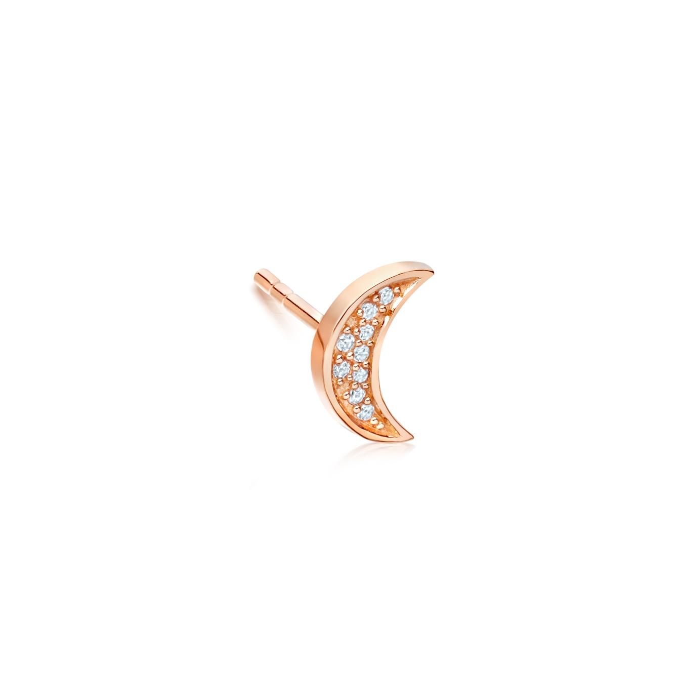 Mini Moon Biography Single Stud Earring